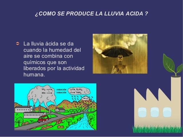 Las ecologistas
