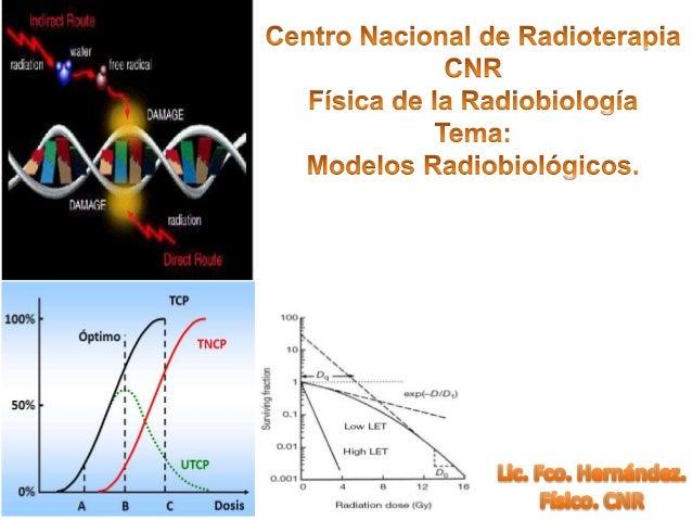 Efectos Indirectos: Radiolisis del agua Rol de los Radicales libres H20 e- e-aq H20 H20H20 H20+ H+ OH. Tiene un e- no apar...
