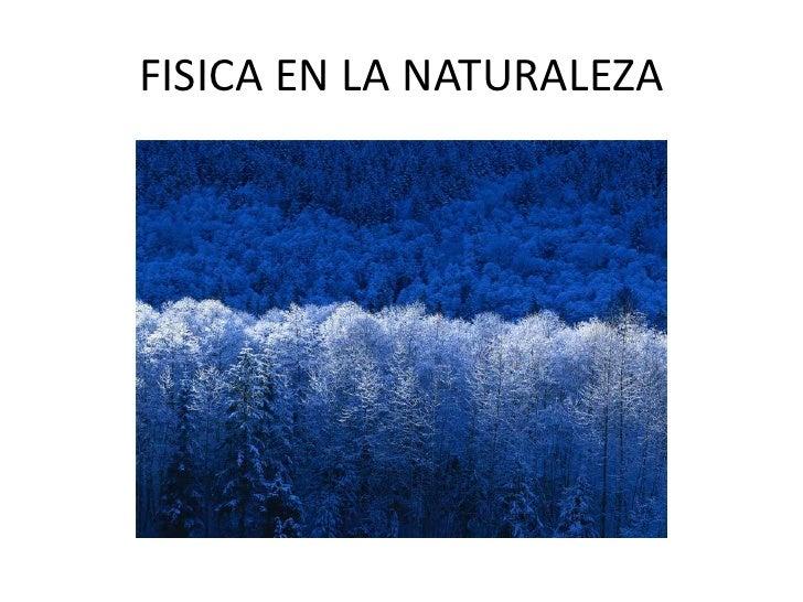 FISICA EN LA NATURALEZA<br />