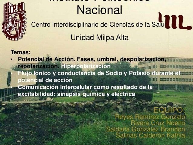 Instituto Politécnico Nacional Centro Interdisciplinario de Ciencias de la Salud  Unidad Milpa Alta Temas: • Potencial de ...