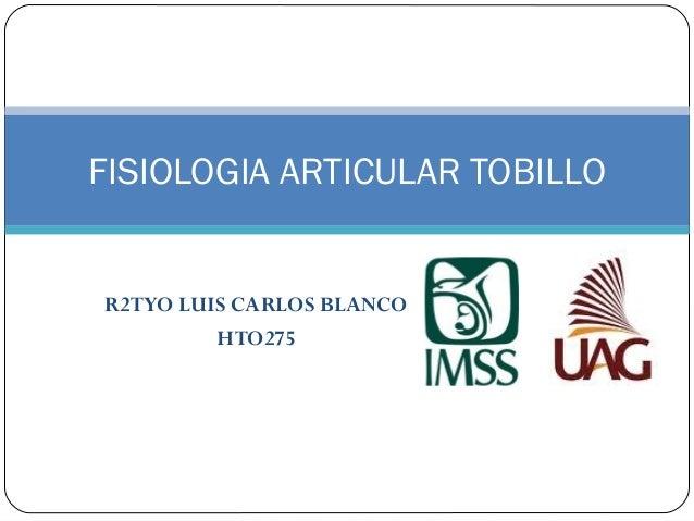 FISIOLOGIA ARTICULAR TOBILLO R2TYO LUIS CARLOS BLANCO HTO275