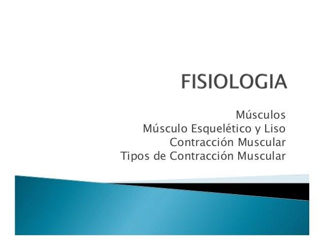 Músculos Músculo Esquelético y Liso Contracción Muscular Tipos de Contracción Muscular