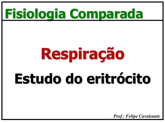 Prof.: Felipe Cavalcante Fisiologia Comparada Estudo do eritrócito Respiração