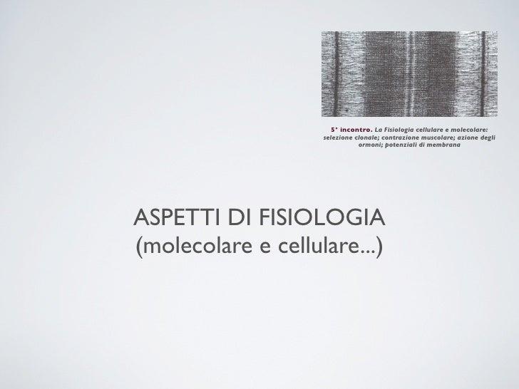 5° incontro. La Fisiologia cellulare e molecolare:                    selezione clonale; contrazione muscolare; azione deg...