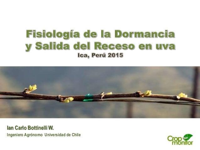 Ian Carlo Bottinelli W. Ingeniero Agrónomo Universidad de Chile