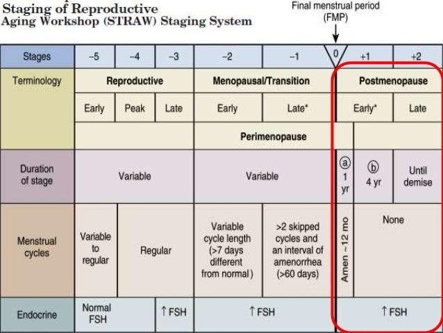 Qué causa la MENOPAUSIA? • Depleción de ovocitos o fallo ovárico – folicular • Pérdida exponencial folicular en la vida po...
