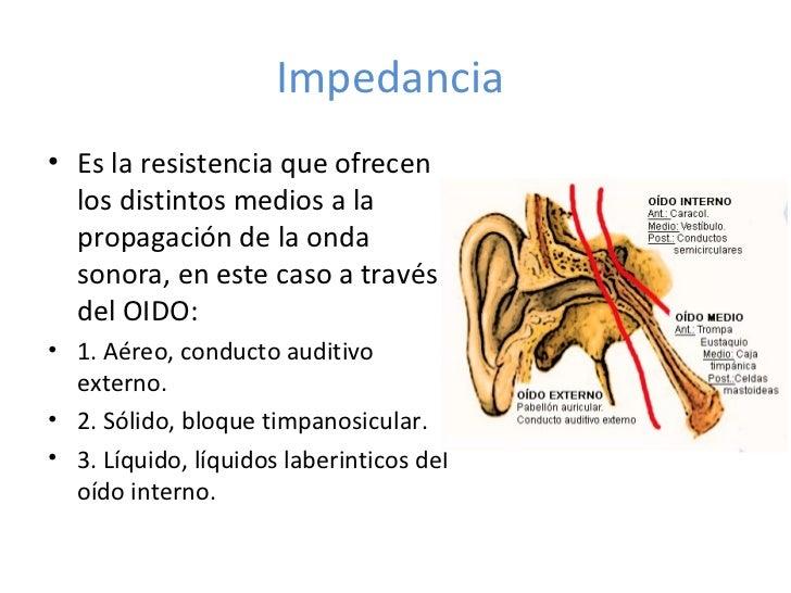 Fisiología del oído externo, medio e interno