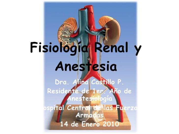 Fisiología Renal y Anestesia Dra. Alina Castillo P. Residente de 1er. Año de Anestesiología Hospital Central de las Fuerza...
