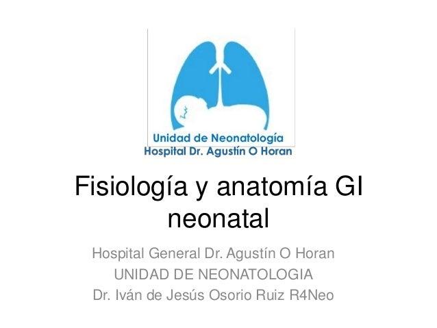 Fisiología y anatomía GI neonatal Hospital General Dr. Agustín O Horan UNIDAD DE NEONATOLOGIA Dr. Iván de Jesús Osorio Rui...