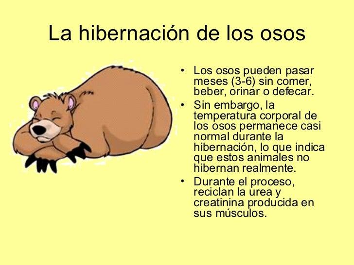 Worksheet. Fisiologia Animal Excrecin