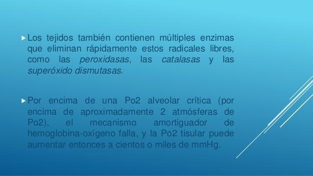 Más allá de 80 mmHg de Pco2 alveolar la situación se hace intolerable y finalmente el centro respiratorio comienza a esta...