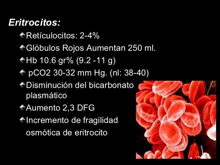 <ul><li>Eritrocitos: </li></ul><ul><ul><li>Retículocitos: 2-4% </li></ul></ul><ul><ul><li>Glóbulos Rojos Aumentan 250 ml. ...
