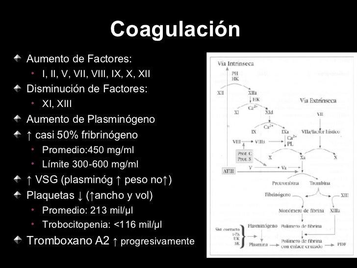 Coagulación  <ul><li>Aumento de Factores: </li></ul><ul><ul><li>I, II, V, VII, VIII, IX, X, XII </li></ul></ul><ul><li>Dis...