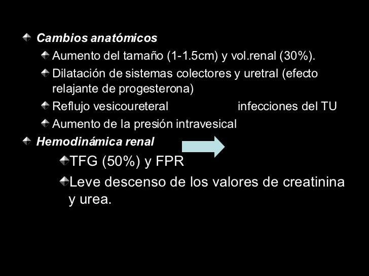 <ul><li>Cambios anatómicos </li></ul><ul><ul><li>Aumento del tamaño (1-1.5cm) y vol.renal (30%). </li></ul></ul><ul><ul><l...