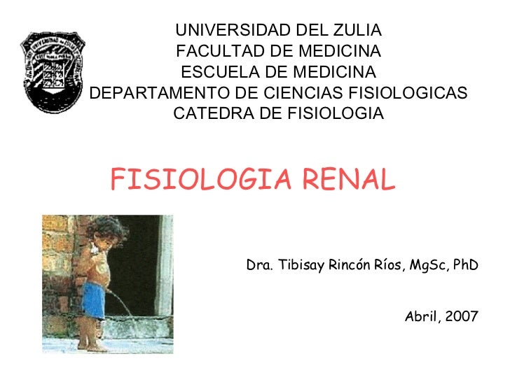 UNIVERSIDAD DEL ZULIA FACULTAD DE MEDICINA ESCUELA DE MEDICINA DEPARTAMENTO DE CIENCIAS FISIOLOGICAS CATEDRA DE FISIOLOGIA...