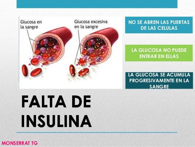 Los riñones, la diabetes e insuficiencia renal por diabetes