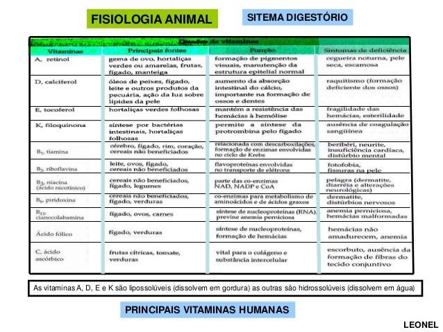 Fisiologia animal comparada    (versão para aula) Slide 2