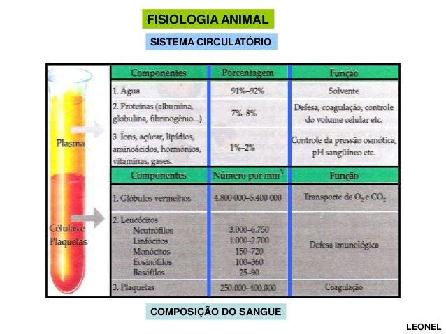 FISIOLOGIA ANIMAL SISTEMA CIRCULATÓRIO CIRCULAÇÃO  COMPOSIÇÃO DO SANGUE LEONEL