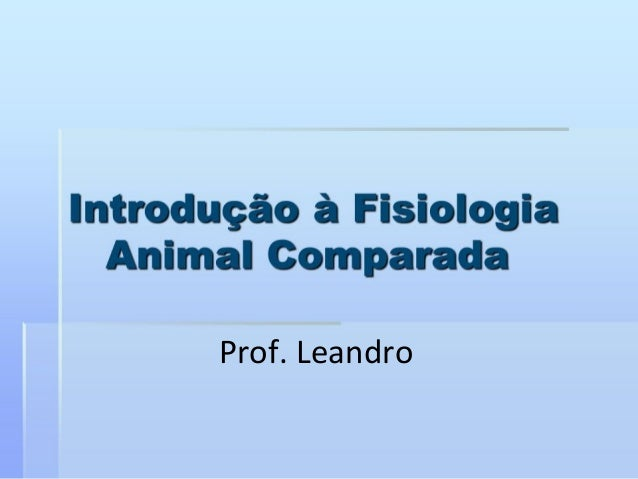 Prof. Leandro