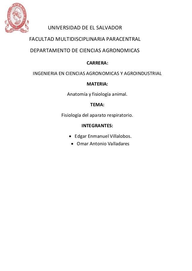 Contemporáneo Anatomía Del Tracto Respiratorio - Telegram Sex