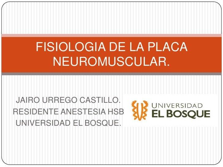 FISIOLOGIA DE LA PLACA       NEUROMUSCULAR. JAIRO URREGO CASTILLO.RESIDENTE ANESTESIA HSBUNIVERSIDAD EL BOSQUE.