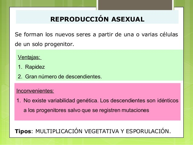 Reproduccion angiospermas asexual