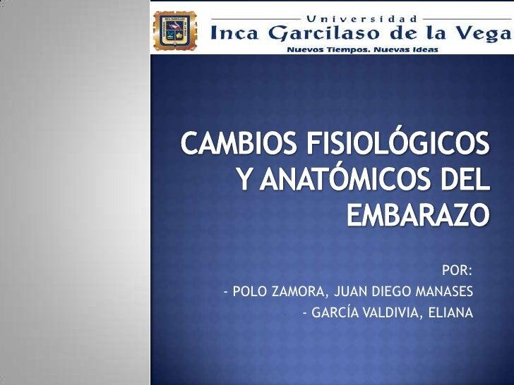 CAMBIOS FISIOLÓGICOSY ANATÓMICOS DELEMBARAZO<br />POR:<br /><ul><li>- POLO ZAMORA, JUAN DIEGO MANASES