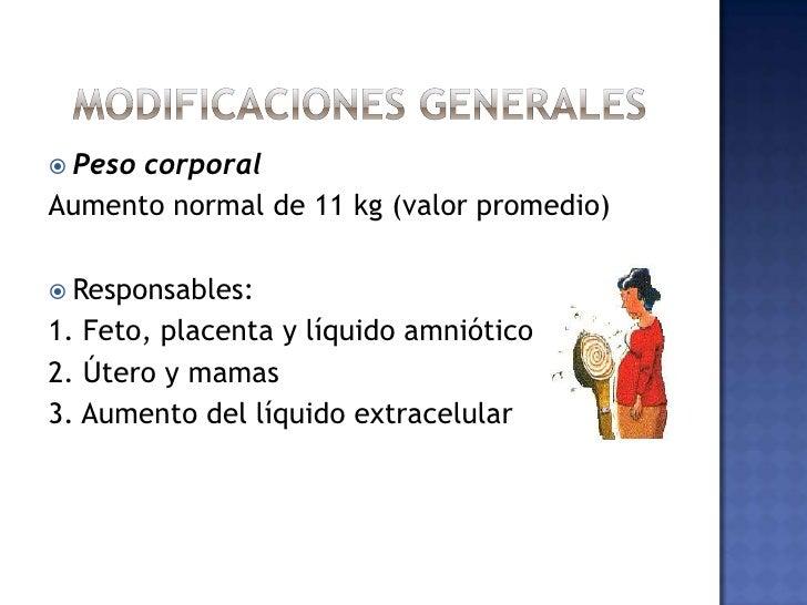 MODIFICACIONES GENERALES<br />Peso corporal<br />Aumento normal de 11 kg (valor promedio)<br />Responsables:<br />1. Feto,...