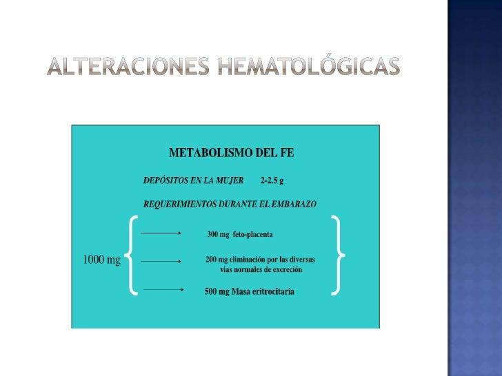 Volumen Sanguíneo:<br /> de 40-45% en las semanas 6/28/34 (> meseta)<br />De 1,200 a 1,500 ml<br />Promedio: 450 ml (2da m...