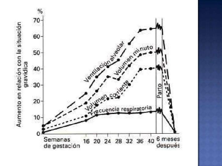 Riego Sanguíneo Uterino<br />Aumenta 500 a 700 ml X´<br />80% a placenta<br />20% a Endometrio y Miometrio<br />Riego Sang...