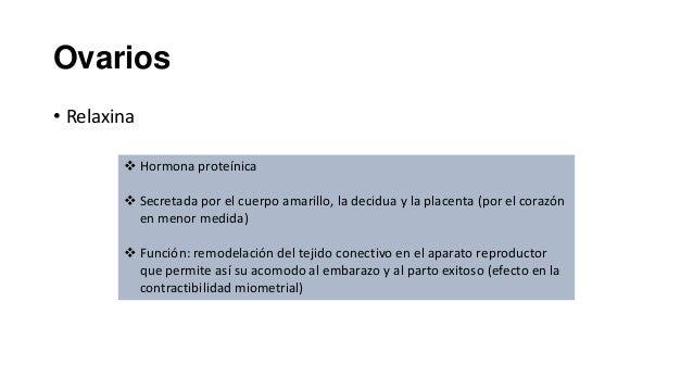 Ovarios • Relaxina  Hormona proteínica  Secretada por el cuerpo amarillo, la decidua y la placenta (por el corazón en me...