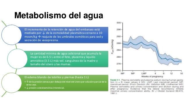 Metabolismo del agua El incremento de la retención de agua del embarazo está mediado por ↓ de la osmolalidad plasmática ce...