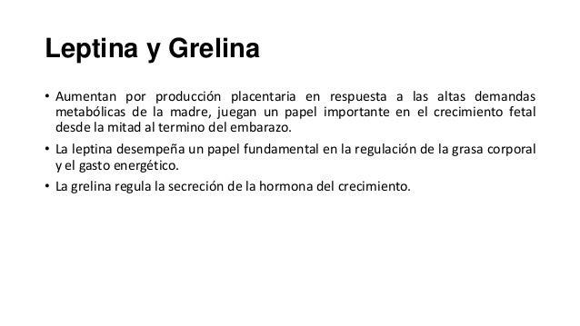 Leptina y Grelina • Aumentan por producción placentaria en respuesta a las altas demandas metabólicas de la madre, juegan ...
