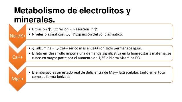 Metabolismo de electrolitos y minerales. Na+/K+  Ca++  Mg++  • Filtración ↑, Excreción =, Resorción ↑↑. • Niveles plasmáti...