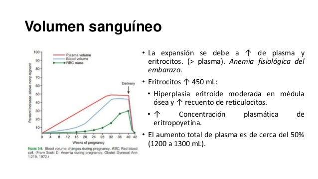 Volumen sanguíneo • La expansión se debe a ↑ de plasma y eritrocitos. (> plasma). Anemia fisiológica del embarazo.  • Erit...