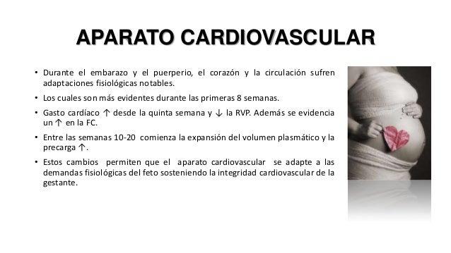 APARATO CARDIOVASCULAR • Durante el embarazo y el puerperio, el corazón y la circulación sufren adaptaciones fisiológicas ...