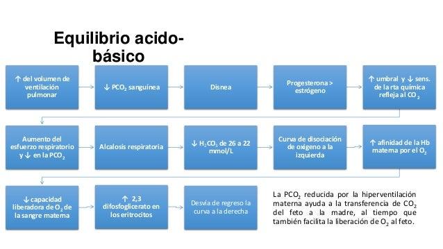 Función renal  La CSr ↓ durante el embarazo normal, >0.8 ↑ ~50% en IFG y flujo plasmático mg/dl (>72µmol/L) de creatinina ...