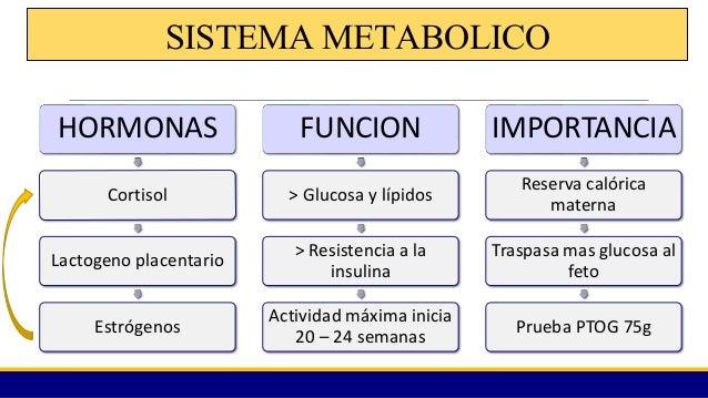 Fisiologia del embarazo 1