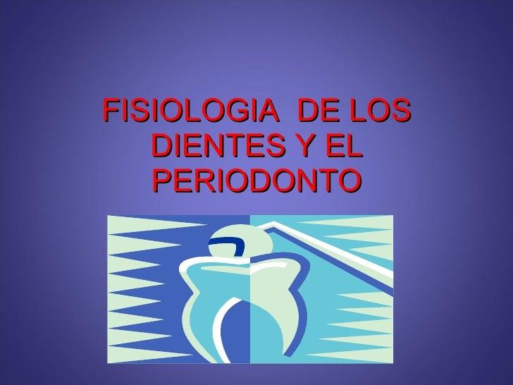 FISIOLOGIA  DE LOS DIENTES Y EL PERIODONTO