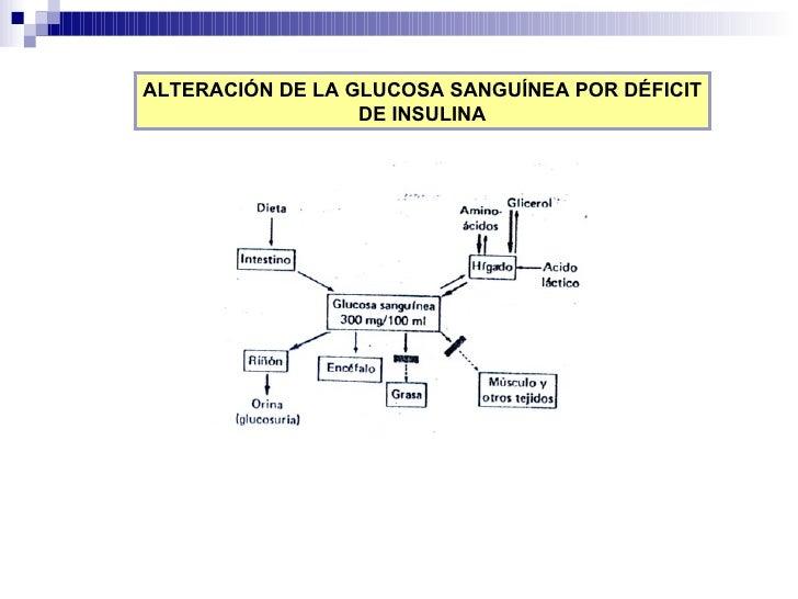 ALTERACIÓN DE LA GLUCOSA SANGUÍNEA POR DÉFICIT DE INSULINA