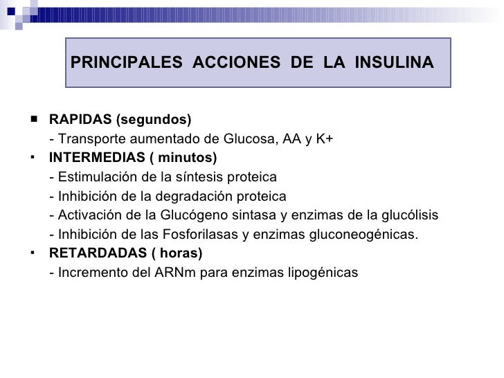 PRINCIPALES  ACCIONES  DE  LA  INSULINA <ul><li>RAPIDAS (segundos) </li></ul><ul><li>- Transporte aumentado de Glucosa, AA...