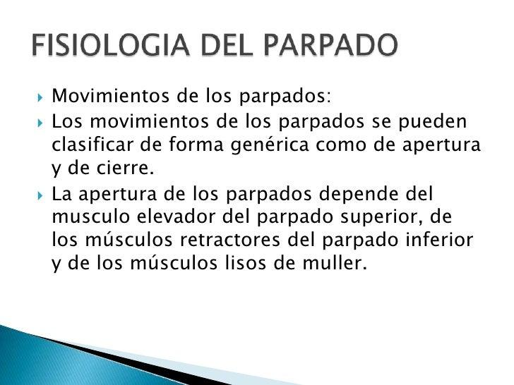 Movimientos de los parpados:<br />Los movimientos de los parpados se pueden clasificar de forma genérica como de apertura ...