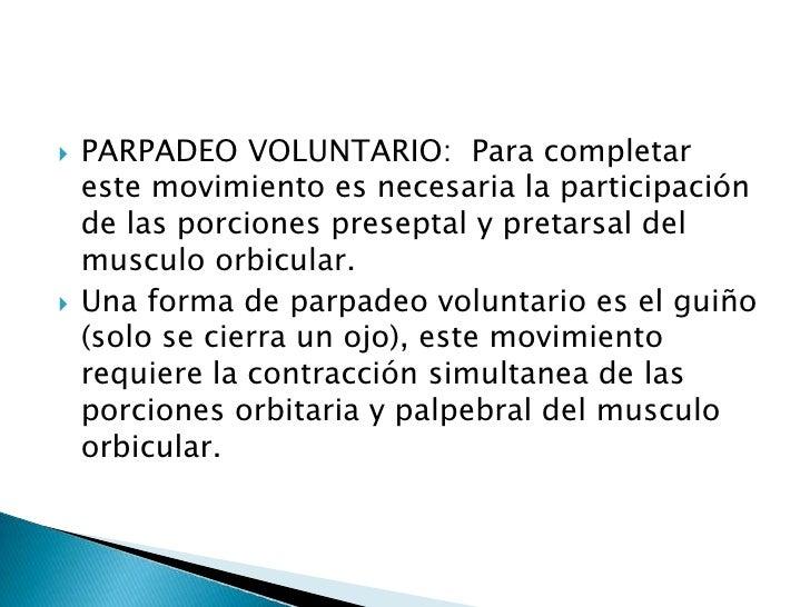 PARPADEO VOLUNTARIO:  Para completar este movimiento es necesaria la participación de las porciones preseptal y pretarsal ...