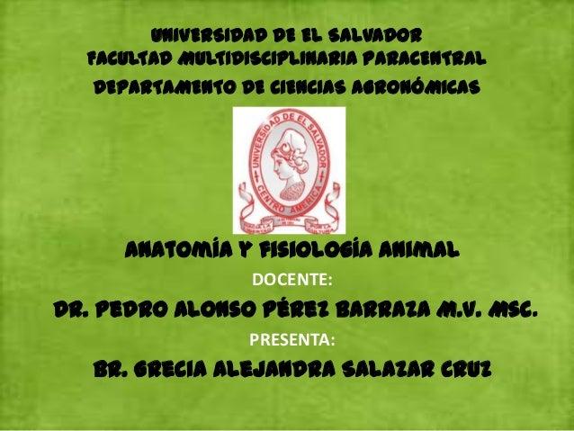 UNIVERSIDAD DE EL SALVADORFACULTAD MULTIDISCIPLINARIA PARACENTRALDEPARTAMENTO DE CIENCIAS AGRONÓMICASAnatomía y fisiología...