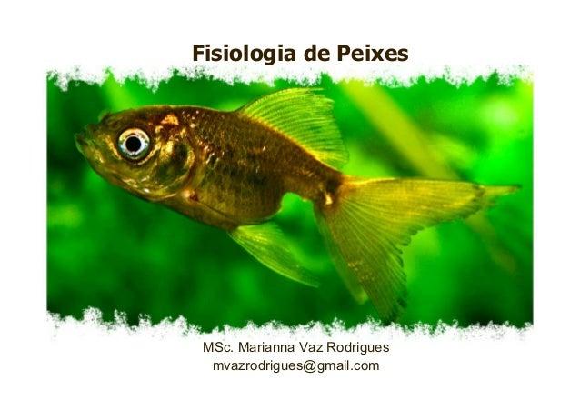 Fisiologia de Peixes MSc. Marianna Vaz Rodrigues mvazrodrigues@gmail.com