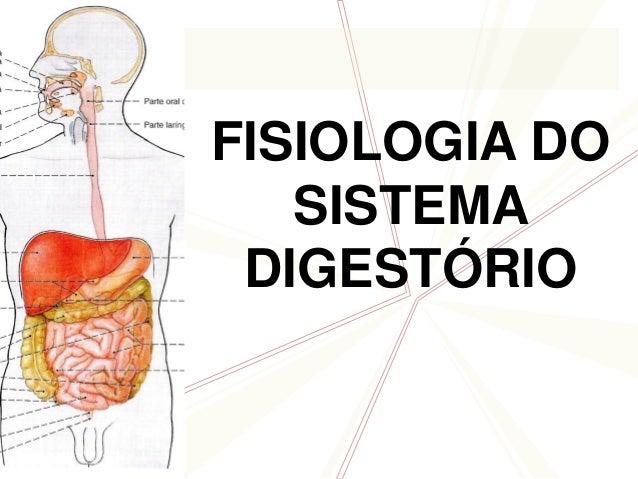 FISIOLOGIA DOSISTEMADIGESTÓRIO