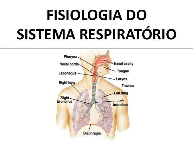 FISIOLOGIA DOSISTEMA RESPIRATÓRIO