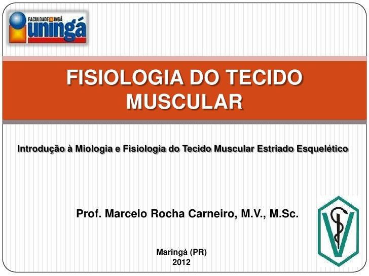 FISIOLOGIA DO TECIDO                MUSCULARIntrodução à Miologia e Fisiologia do Tecido Muscular Estriado Esquelético    ...
