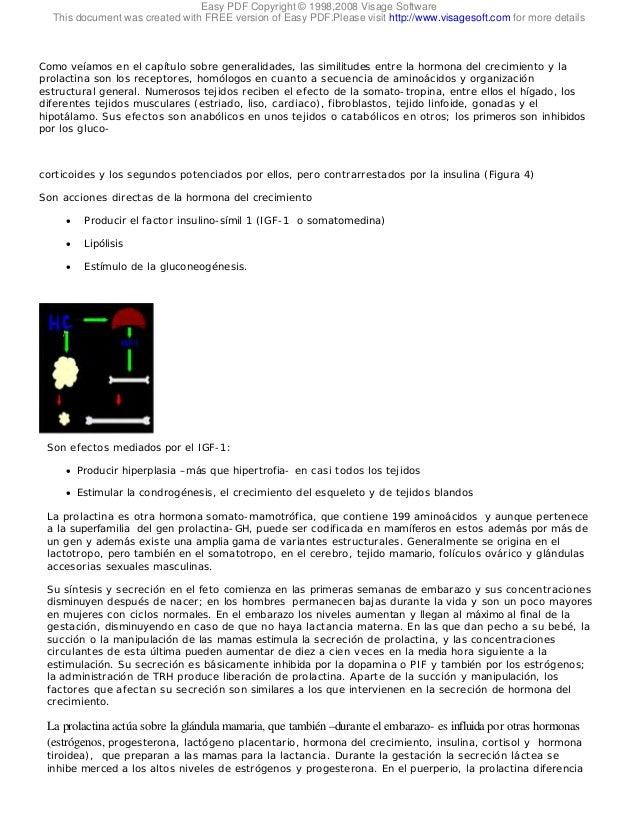 Lujo Tiroidea Anatomía De La Glándula Y La Fisiología Pdf ...