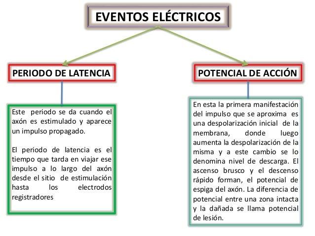 FISIOLOGÍA DE LAS CÉLULAS NERVIOSAS Y MUSCULARES